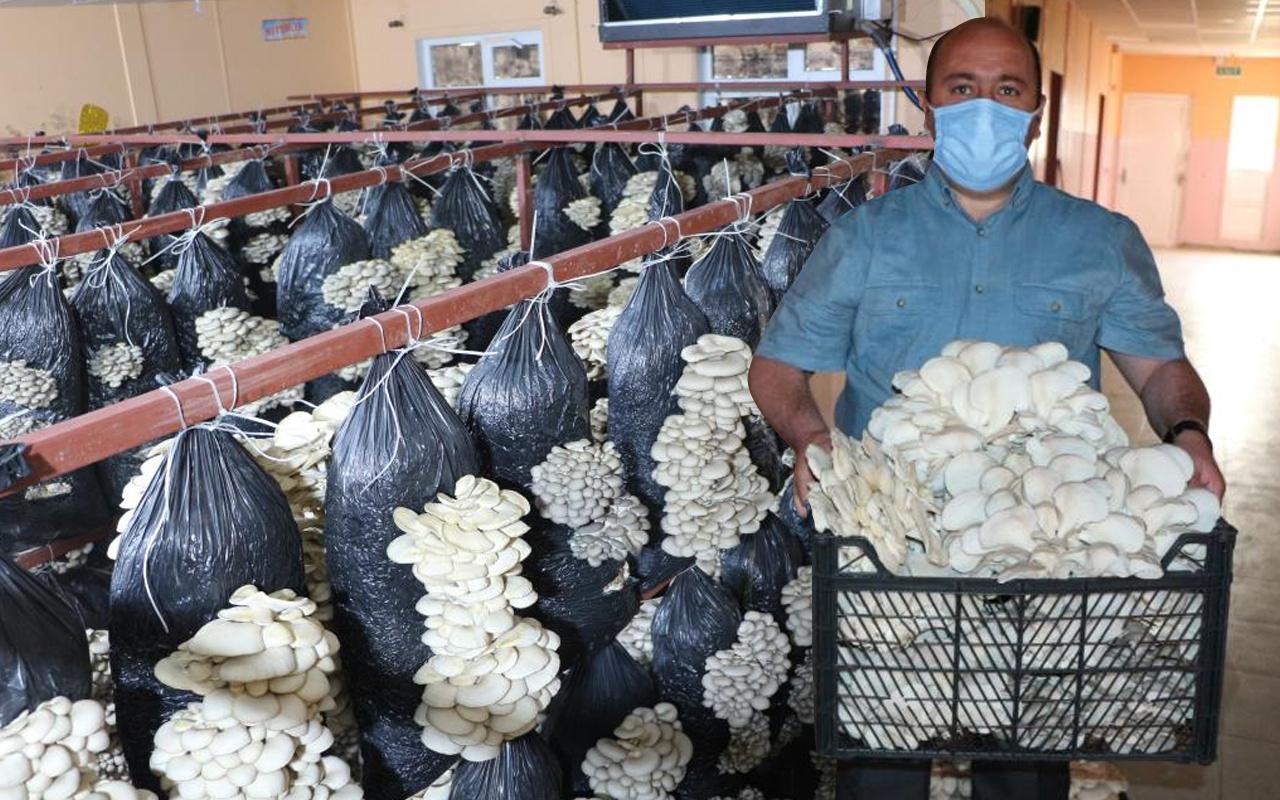Arkadaş tavsiyesiyle Şırnak'ta üretime başladı! Köyünde 16 ton kapasiteli tesis kurdu