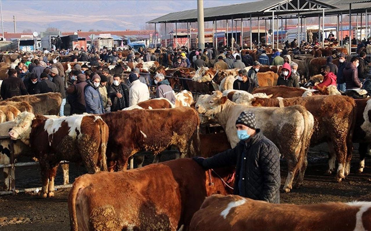 Kovid-19 tedbiri! Kars'taki canlı hayvan pazarları geçici olarak kapatıldı