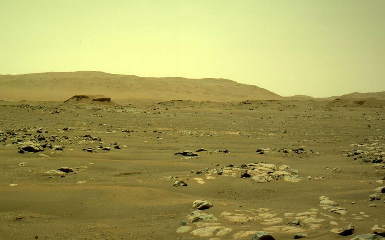 Bilim insanlarından 'Mars vebası' uyarısı yıkıcı sonuçlara yol açar