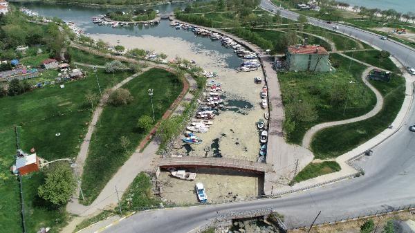 Marmara'da 'salya' kabusu! İstanbul sahillerini sardı kokudan durulmuyor! Avşa Adası ve Erdek Körfezi de...