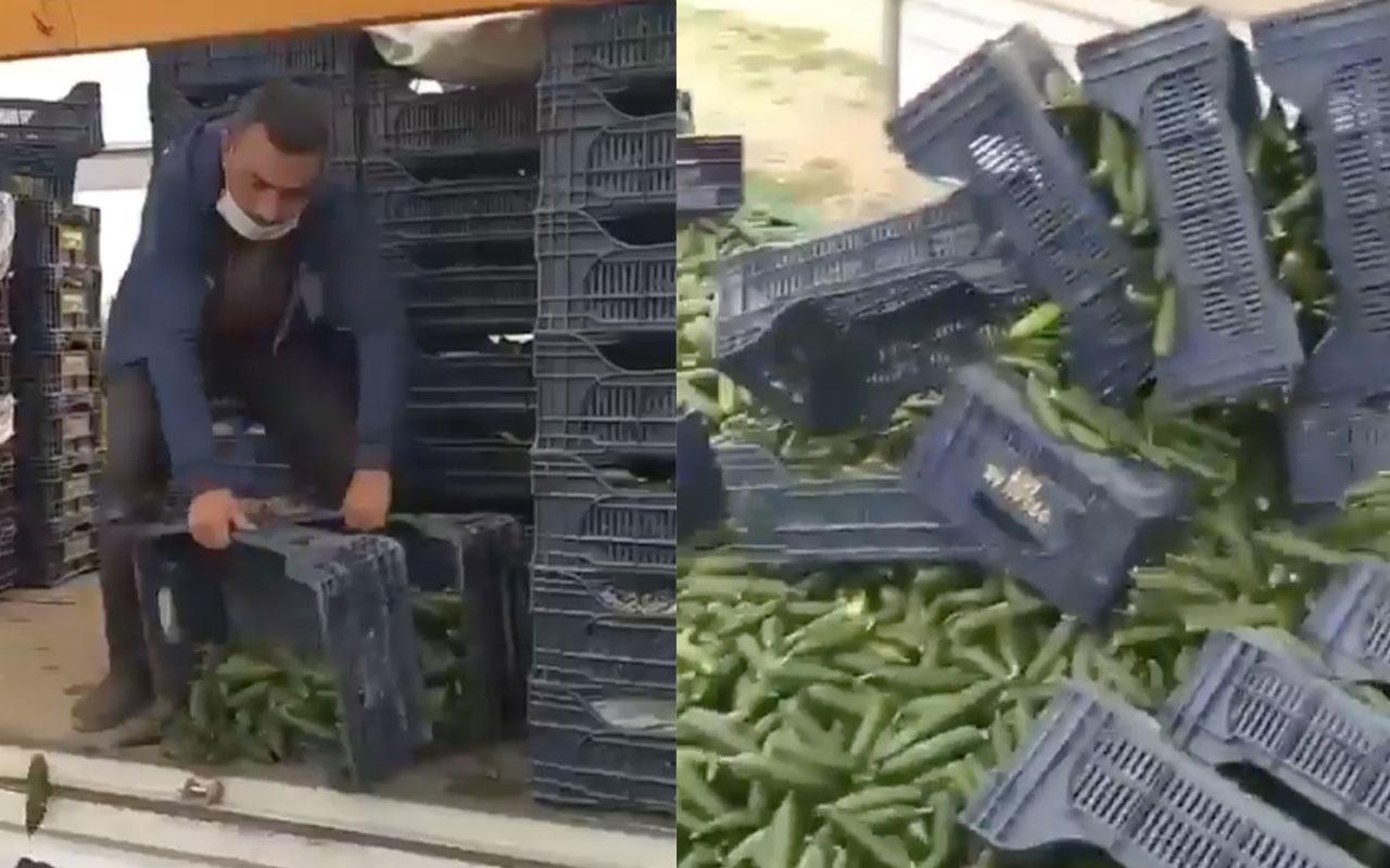"""Antalyalı çiftçi """"ürünüm para etmiyor"""" diye salatalıkları yola döktü"""