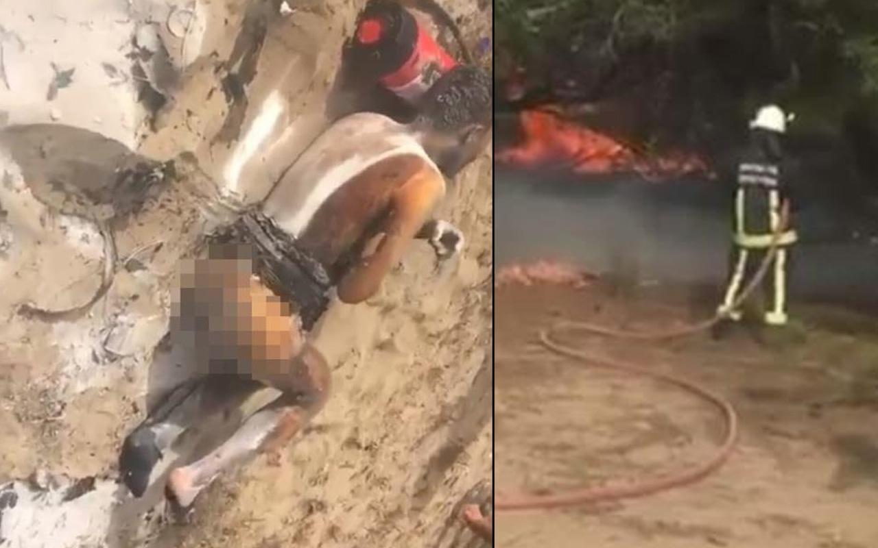 Antalya'da korkunç olay! Hem kendini hem ormanı yaktı acı içinde kıvrandı
