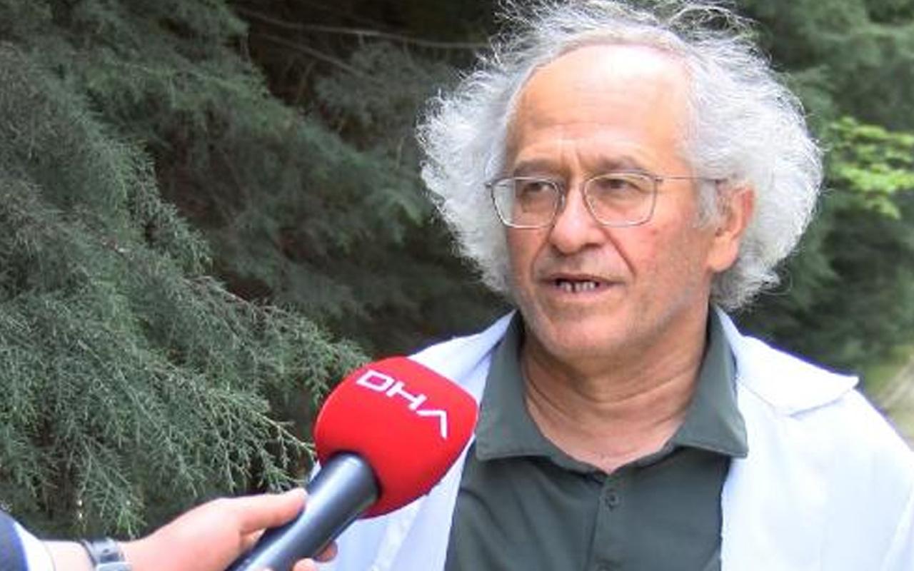 İstanbul'da sivrisinekler ortaya çıktı, 50 virüs bulaştırabiliyor! Prof. Dr. Hüseyin Yılmaz uyardı
