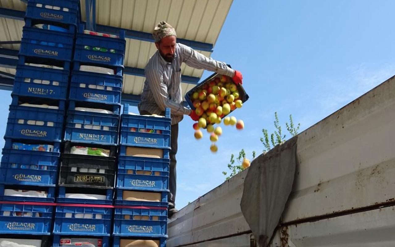 Bursa'da tonlarca meyve soğuk hava depolarında kaldı