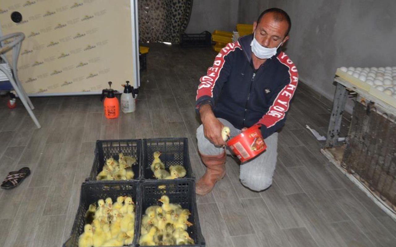 Hollanda'daki işini bırakıp Muş'a döndü! Yılda 5 bin tane üretiyor siparişlere yetişemiyor