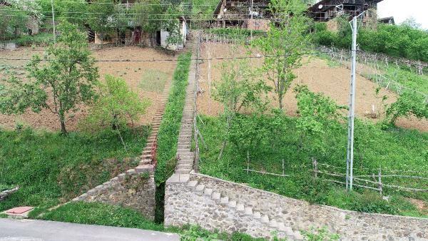 Trabzon'da görenler merak edip soruyor! Karadeniz inadı yüzünden çok masraf yaptılar