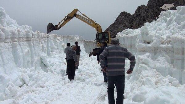 Turistlerin denize girdiği Antalya'da 2,5 metre kar! Kapanan yollar açılıyor