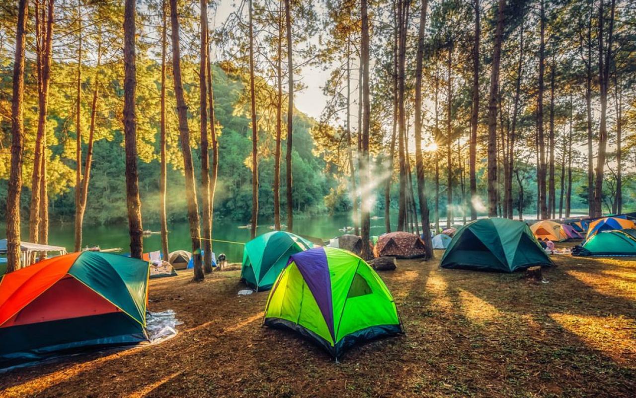 İstanbul çevresinde kamp alanları! İşte 8 harika kamp alanı!