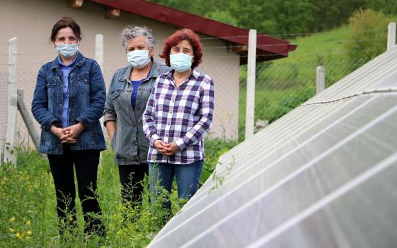 Aylık büyük tasarruf! Zonguldak'ın köylü kadınları elektrik üretiyor görmeye geldiler