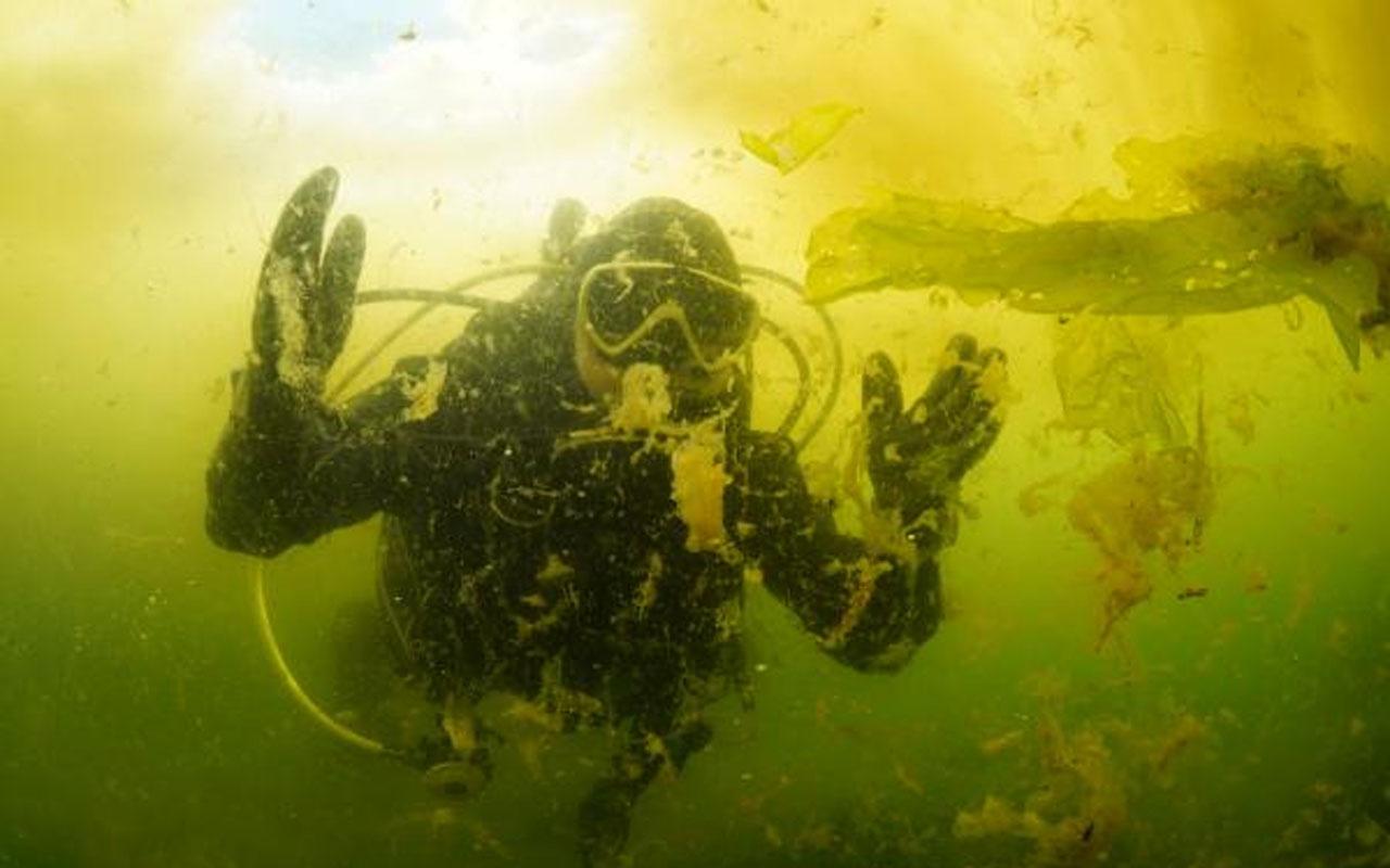 Durum fena! Marmara Denizi'ndeki salya su altını da sardı