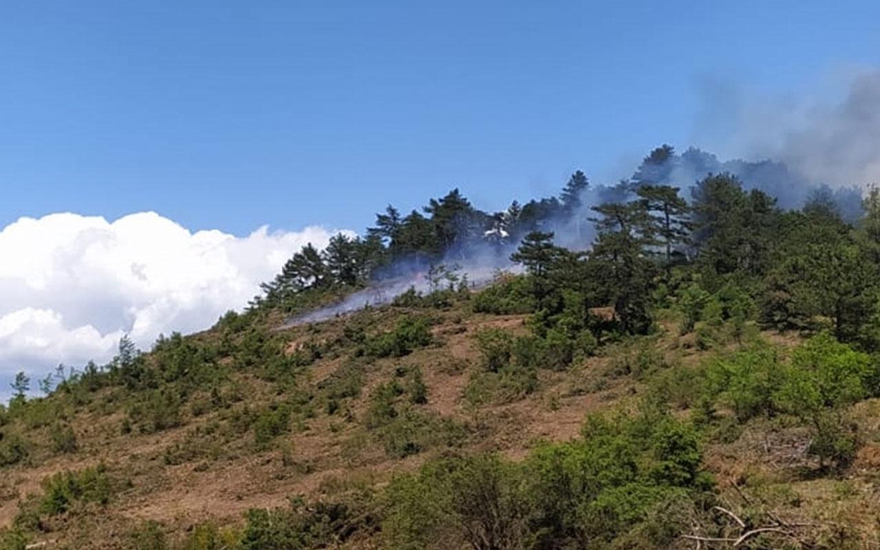 Balıkesir'de orman yangını çıktı! Ekiplerin müdahalesi sürüyor