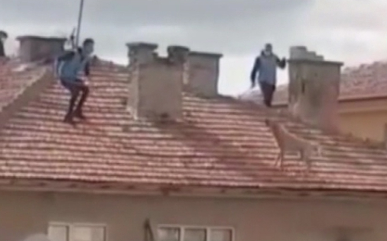 Ankara'da evin çatısında 3 saat mahsur kalan köpek kurtarıldı