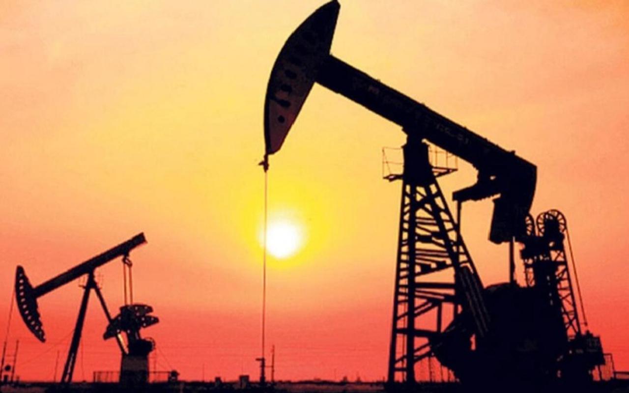 Enerji ve Tabii Kaynaklar Bakanlığı'ndan petrol arama ruhsatı süre uzatımı kararı