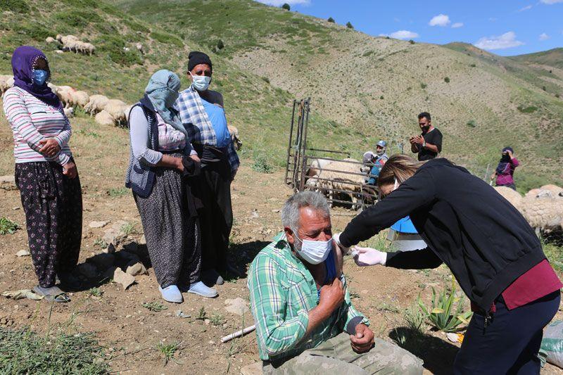 Aşı timleri Tunceli Pülümür'de 2 bin 500 rakımlı yaylada