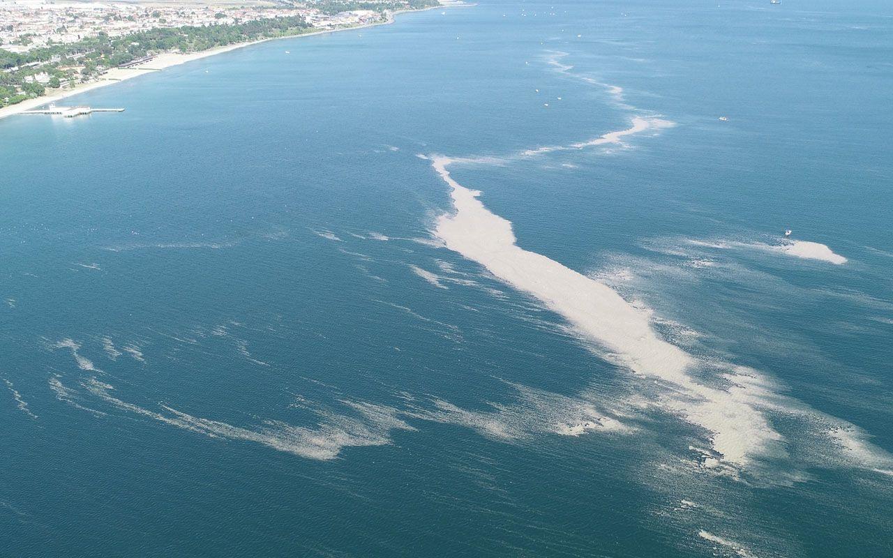 Küçükçekmece'de müsilaj adası oluştu