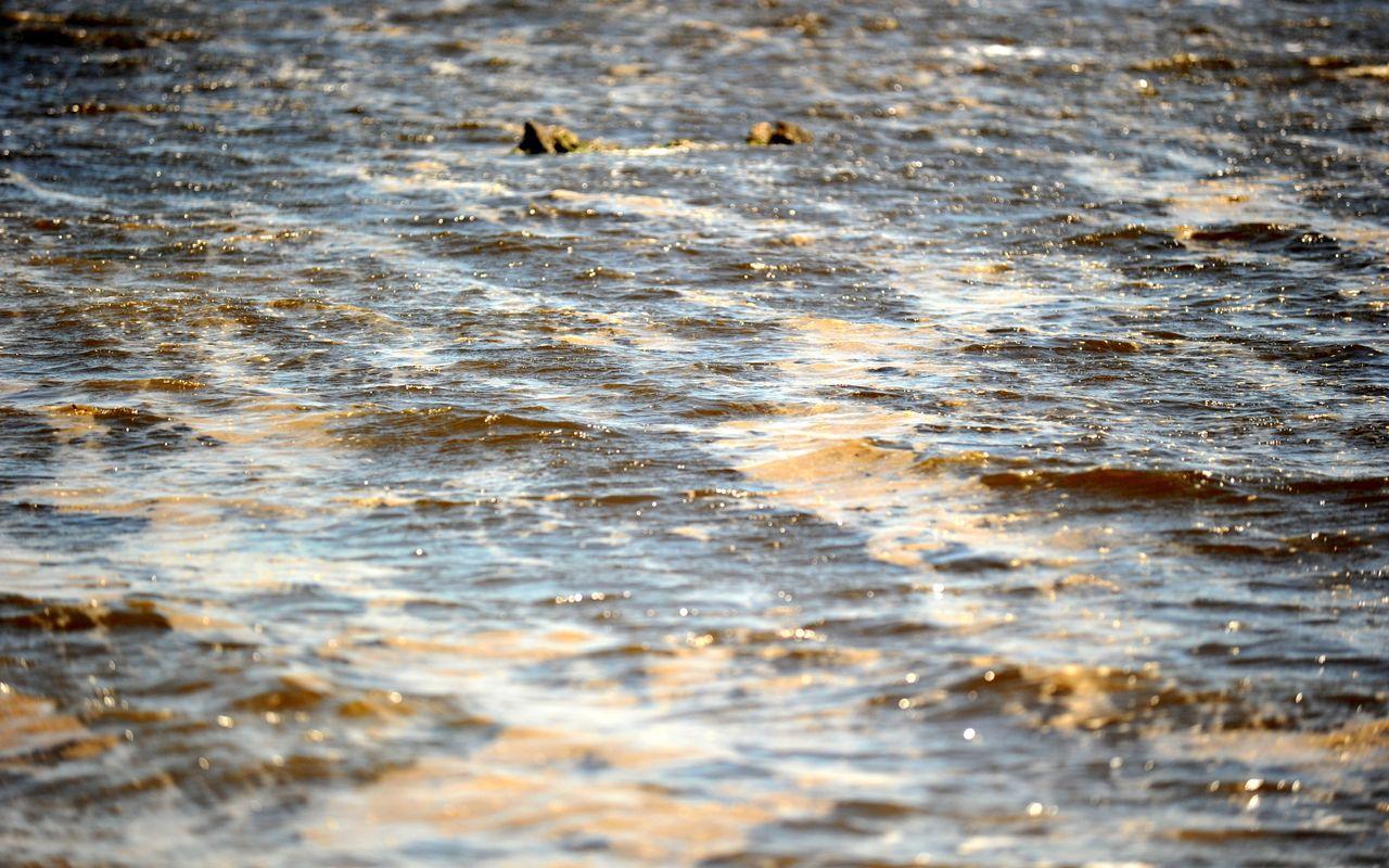Bandırma sahilinde kumun rengi siyaha döndü müsilaj mahvetti