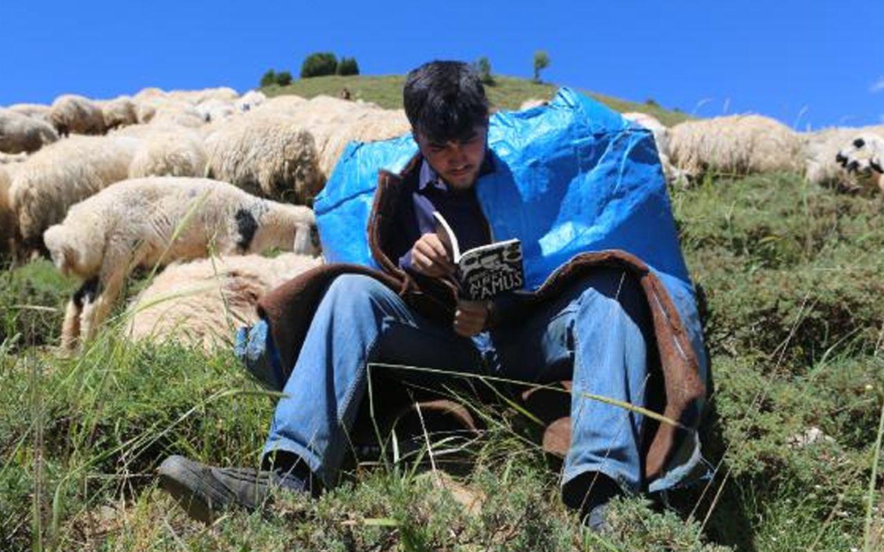 Çobanlık yaparak Tilburg Üniversitesi'ne hazırlanıyordu! Hollanda Büyükelçiliği devrede