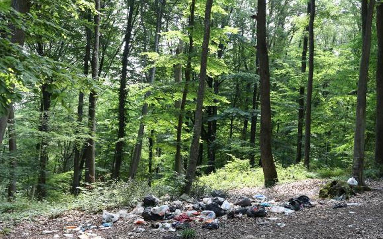 İstanbul'dan pes dedirten görüntü! Piknikçiler yine ormanı çöplüğü çevirdi