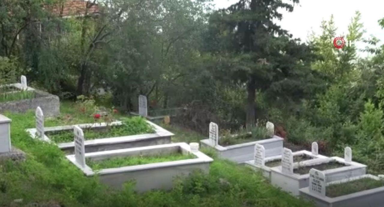 Cesetleri yiyor! Kastamonu'da ortaya çıktı kokuyu duyup mezara gidenler inanamadı