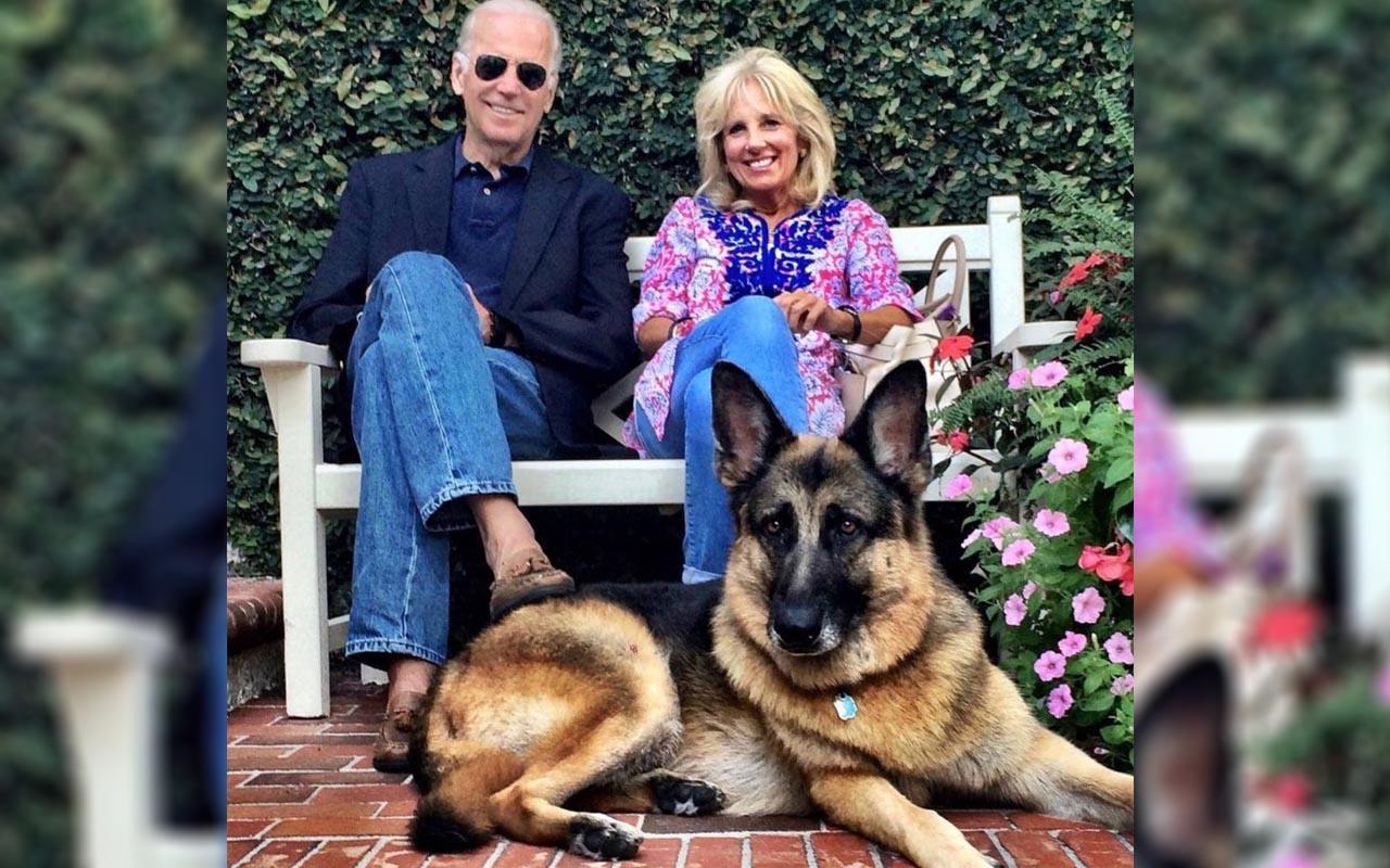 ABD Başkanı Joe Biden ve First Lady Jill Biden'ın köpeği Champ öldü