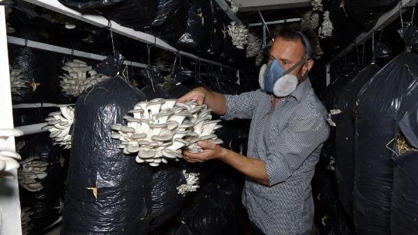 Edirne'de iktisat mezunu iş ararken bu işe başladı güzel para var