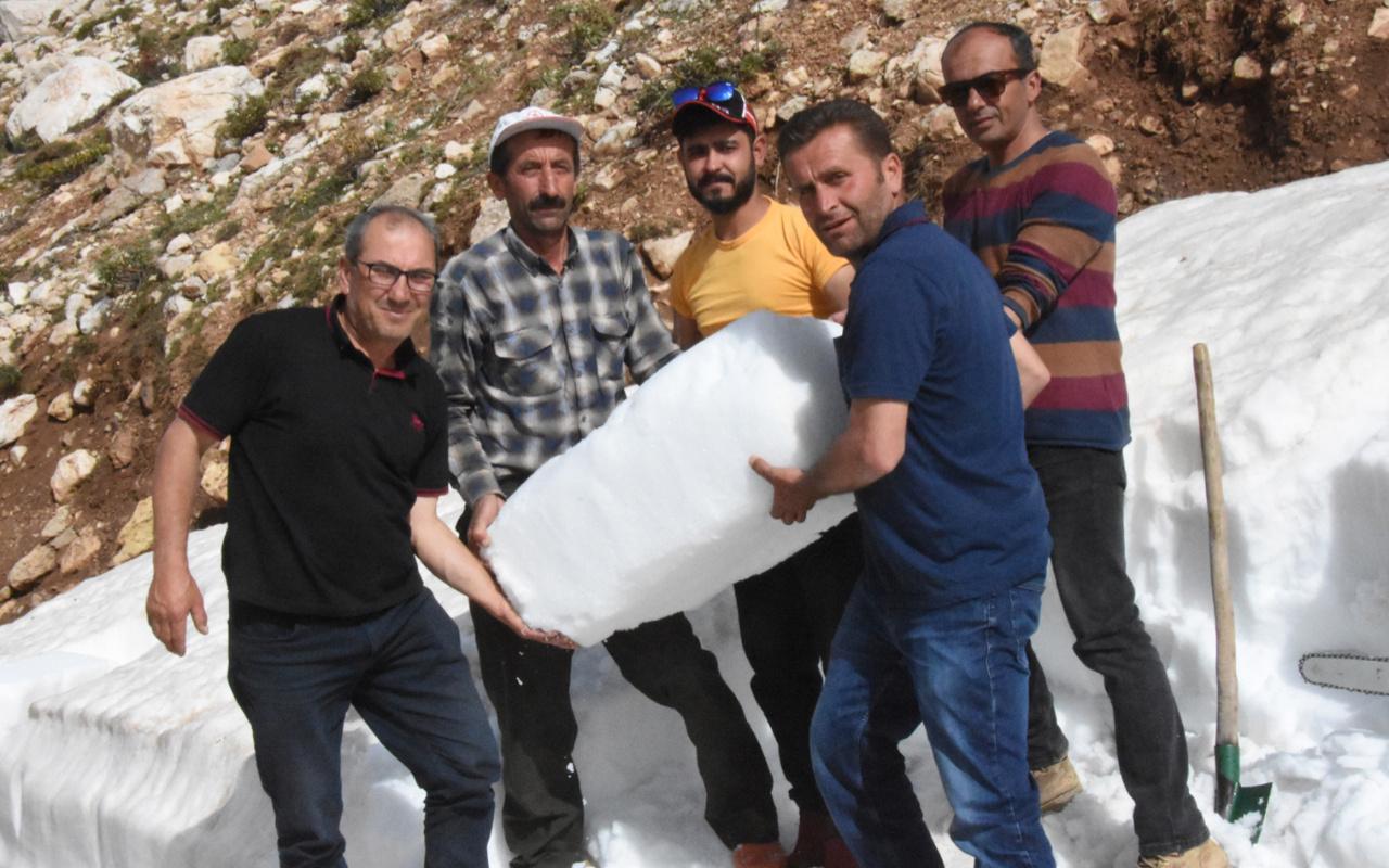 Antalya ve Muğla'da testereyle kesip çuval çuval satıyorlar: Size sürpriz yapacağım