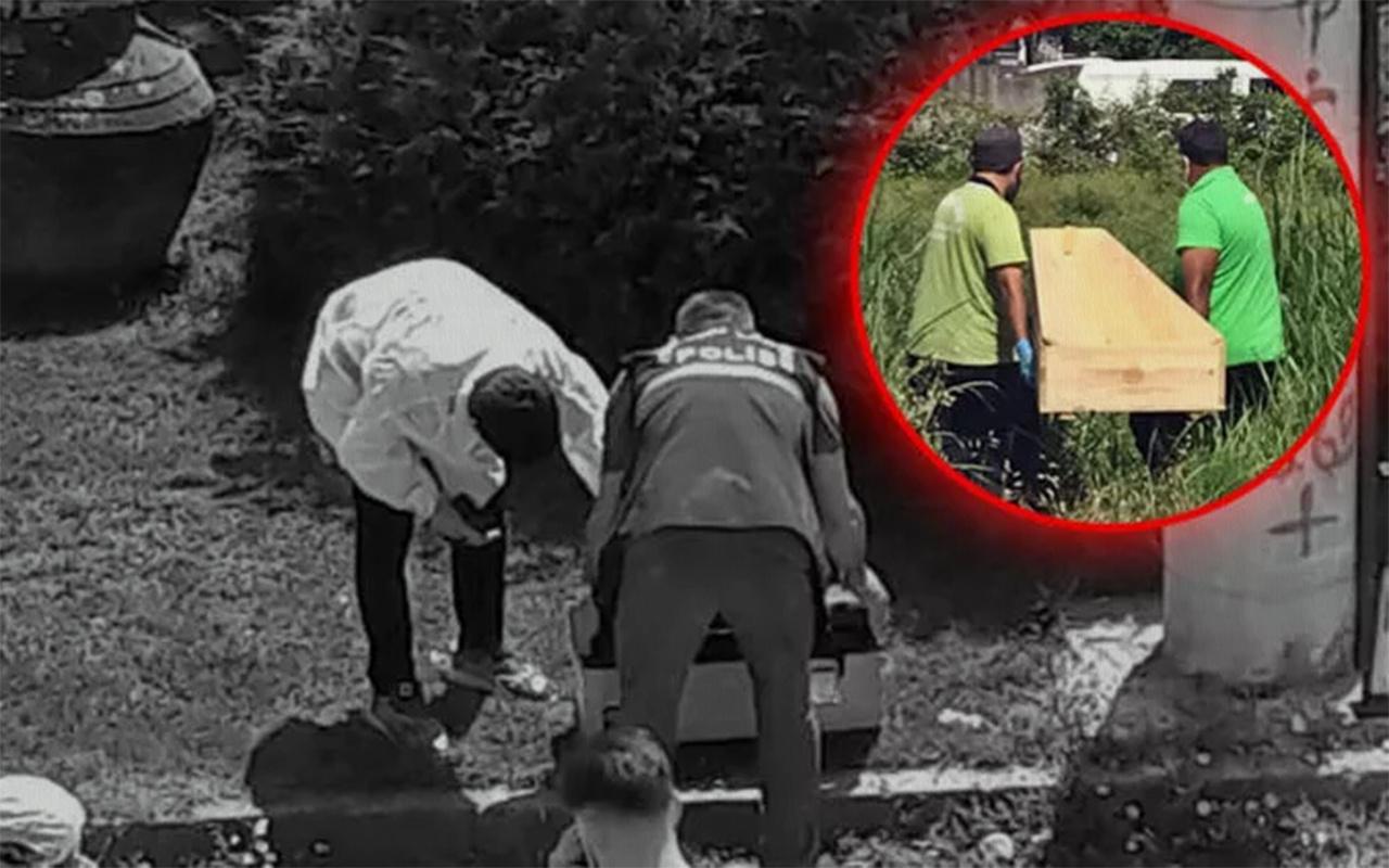 Sakarya'da ağzında insan uzvu taşıyan köpek iki cesedi ortaya çıkardı
