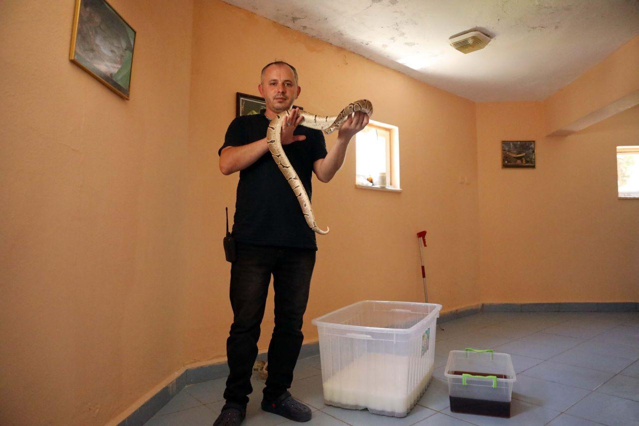 Gaziantep'te yılanların süt banyosu! Bakıcıları uyguluyor bir nedeni var