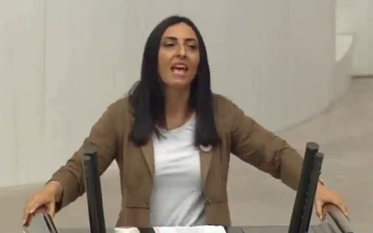 CHP Bursa Milletvekili Nurhayat Altaca TBMM'de kürsüde türkü söyledi