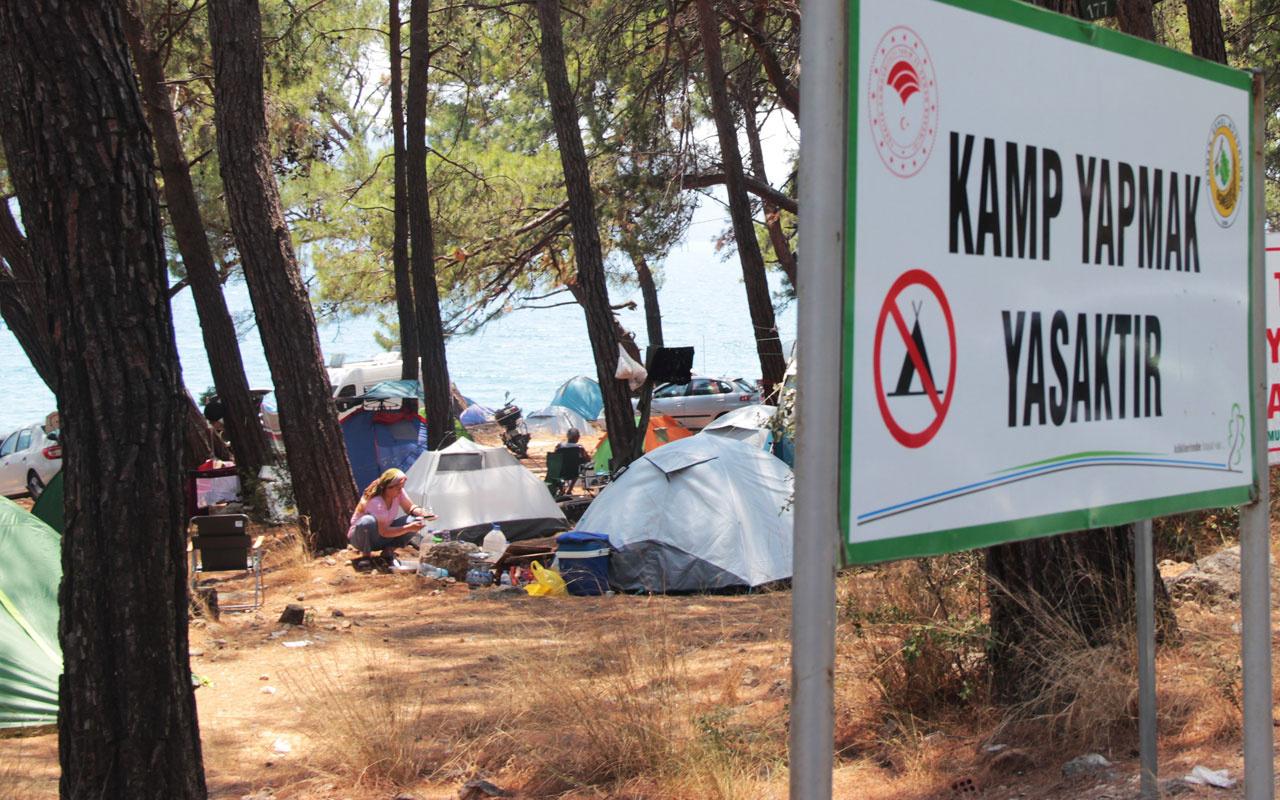 Bodrum Marmaris Fethiye'de yer kalmadı ağaç altında çadır kentler kuruldu