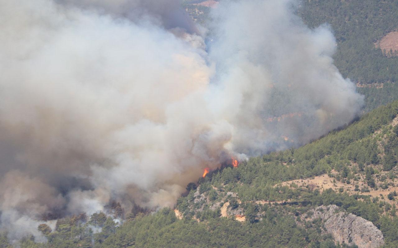 Mersin ve Hatay'daki orman yangınları kontrol altına alındı! Bakan Pakdemirli: 4 gözaltı var