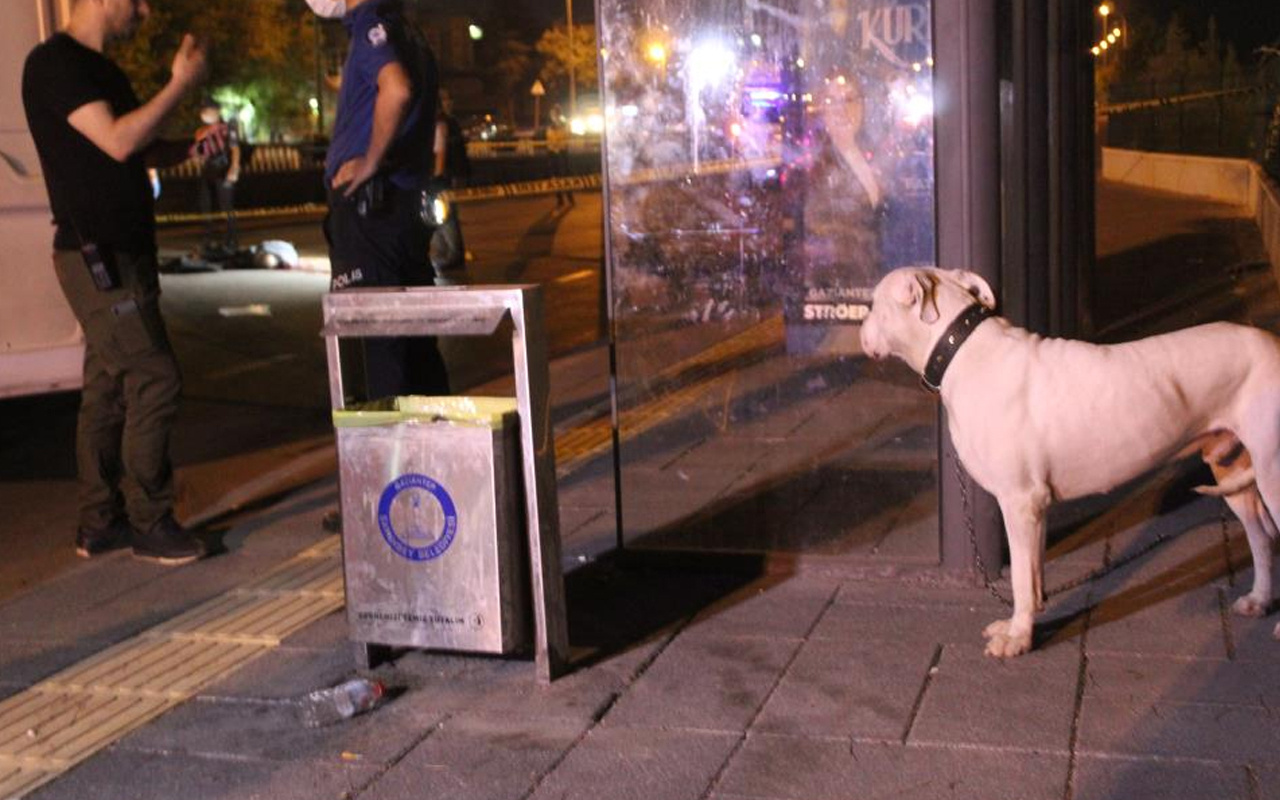 Gaziantep'te kanlı infaz! Köpeğini gezdiren kişi kafasına sıkılarak öldürüldü