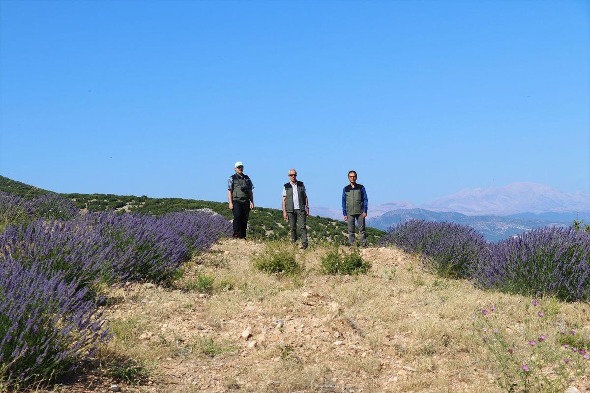 Isparta'da gören fotoğrafını çekiyor! Milyonlarca lira kazandılar: Hedef Fransa'yı geçmek