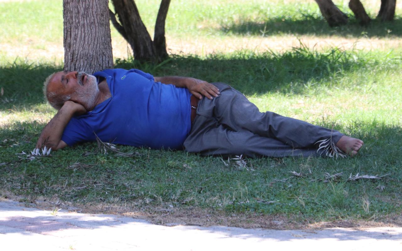 Adana'da sıcaktan bunalan adam gölgede uyuyunca ortalık karıştı