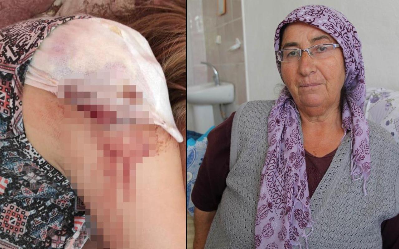 Nevşehir'de domates toplarken hayatının şokunu yaşadılar: Defalarca...