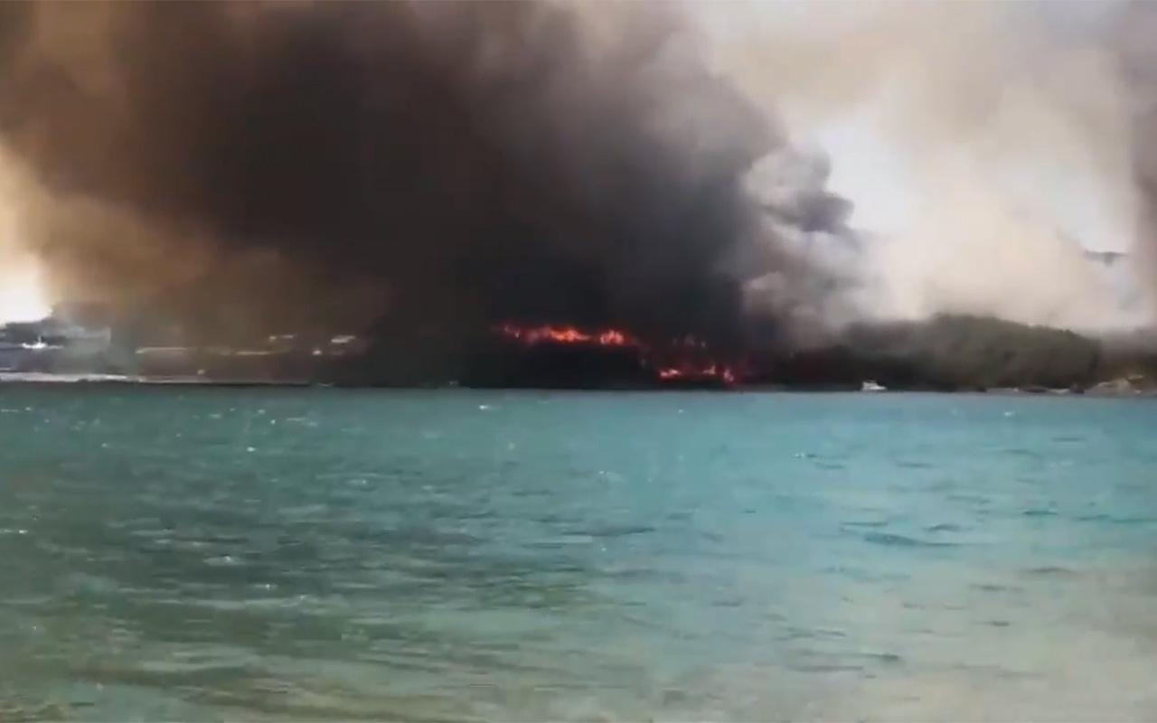 Muğla Milas'taki orman yangınıyla ilgili soruşturma başlatıldı