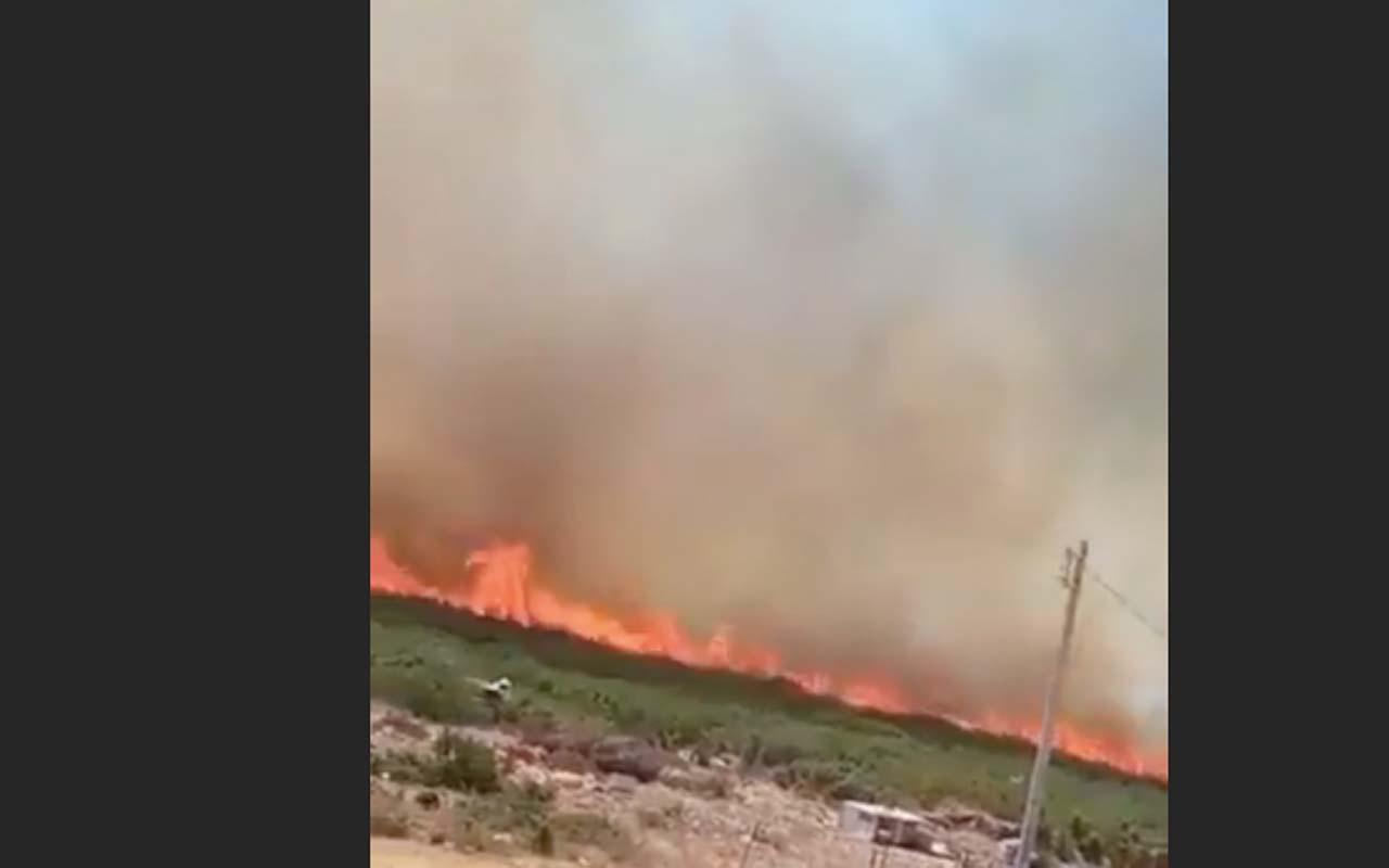 Felaket ilerliyor! Didim İmbat Koyu'nda da yangın çıktı!