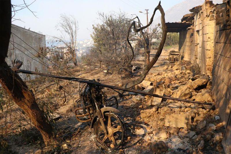 Mersin'deki orman yangını! Hamide Teyze gözyaşlarına boğuldu