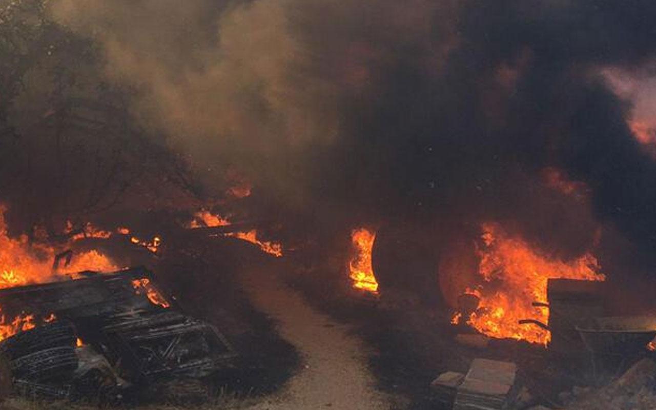 Tarım ve Orman Bakanlığı, orman yangınlarına ilişkin son bilgileri paylaştı