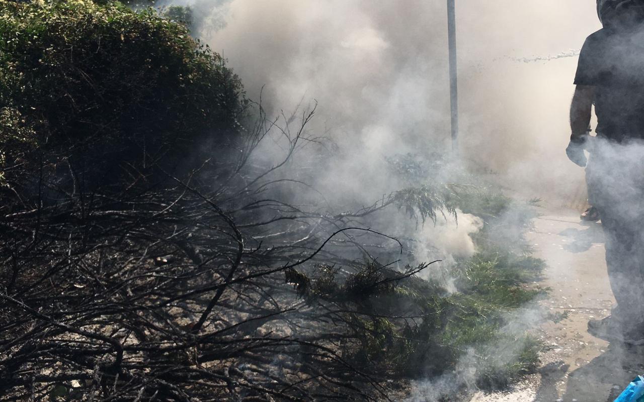Beşiktaş'ta alışveriş merkezinin otluk alanında yangın paniği