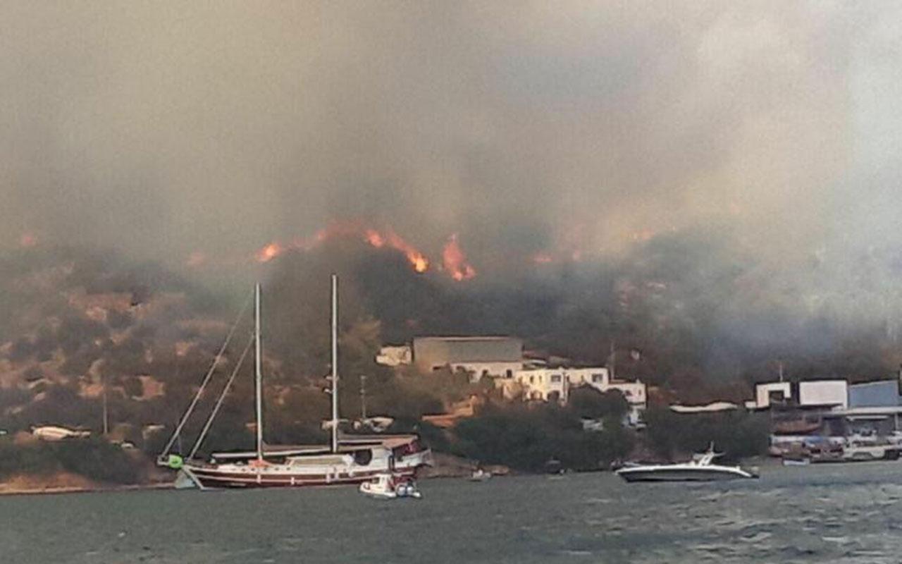 Bodrum'da alevler köye girdi evler yanıyor! 2 şehirde 5 noktada orman yangınları sürüyor!