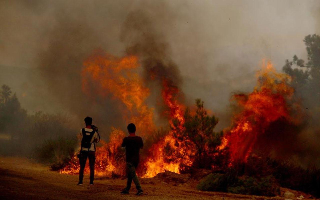 Bodrum yanarken poz veren Süreyya Yalçın'dan özür bağışı! Onur Büyüktopçu çıldırdı!