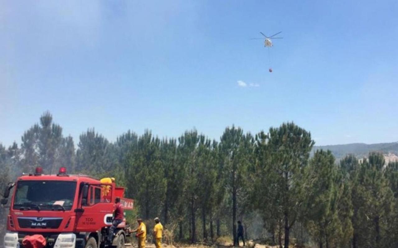 Bolu'da çıkan orman yangını büyümeden söndürüldü