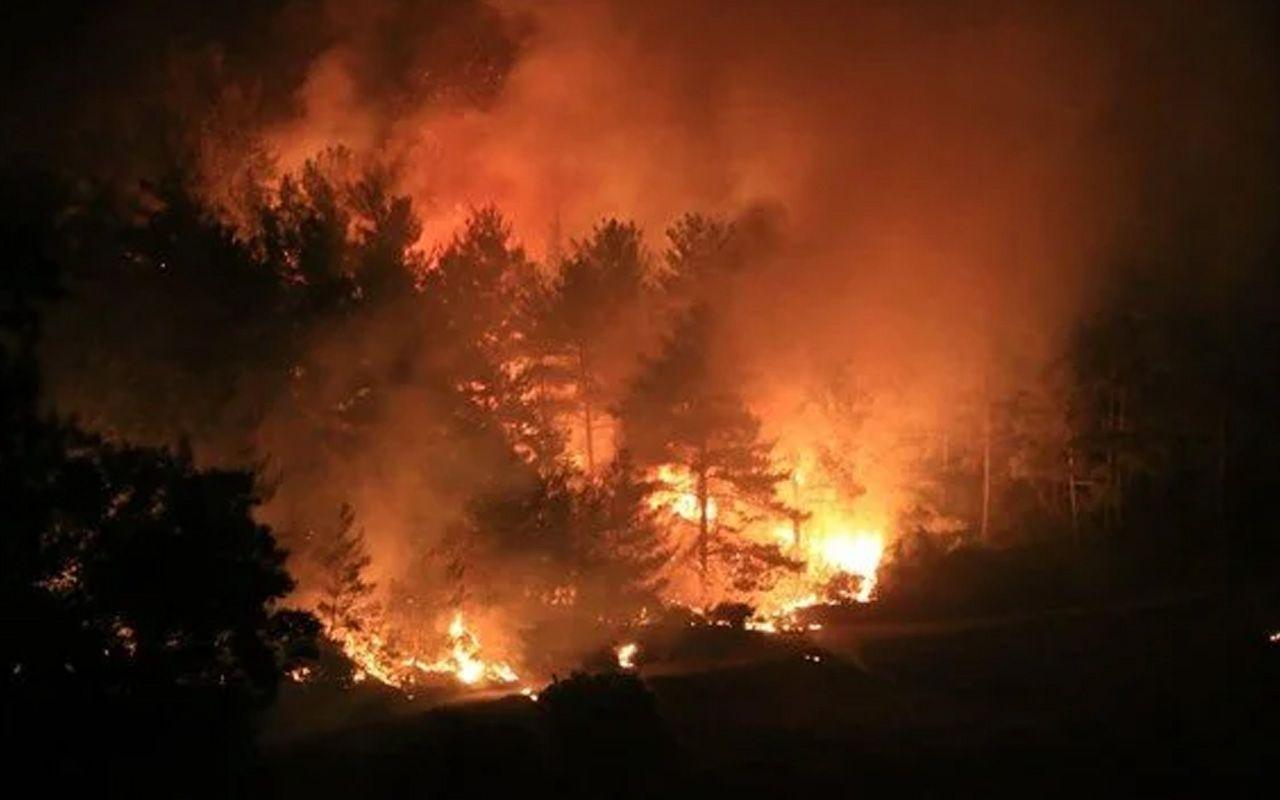 Bodrum'da yeni yangın! Evler ve oteller boşaltılıyor Milas yangını da Bodrum'a sıçradı