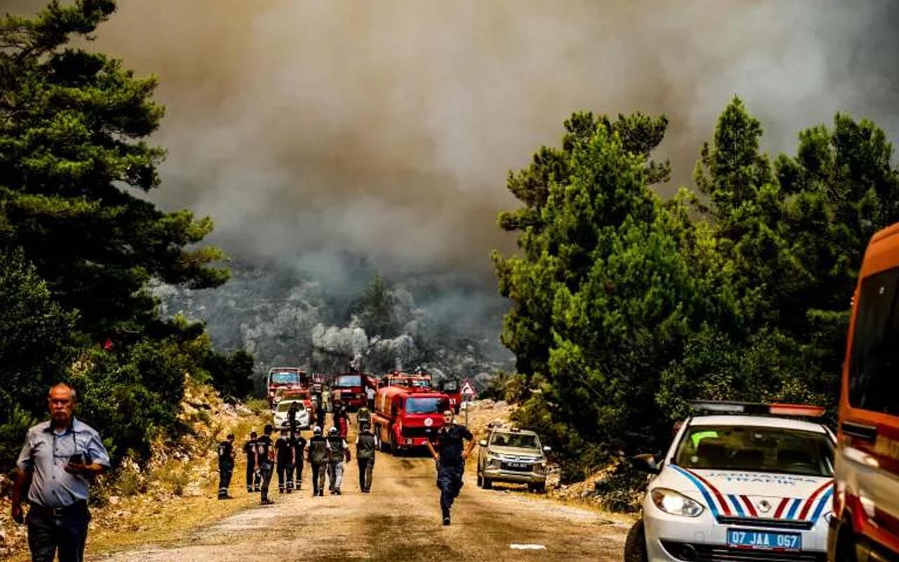 Orman yangınında alevler tüm yöreyi sardı! Çökertme'yi 'Deli Memet' denilen rüzgar yaktı