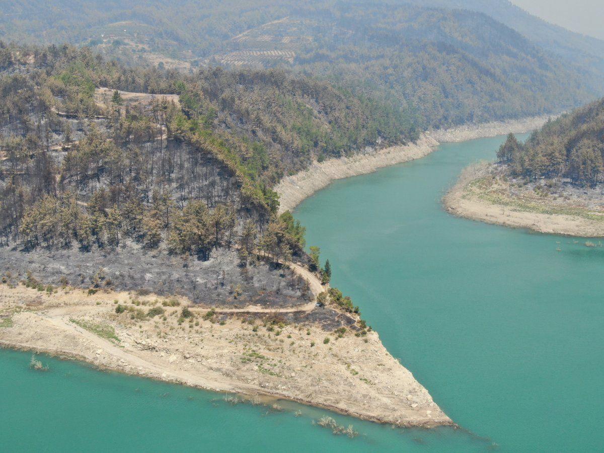 Türkiye'deki orman yangınları sürüyor! İşte il il son durum