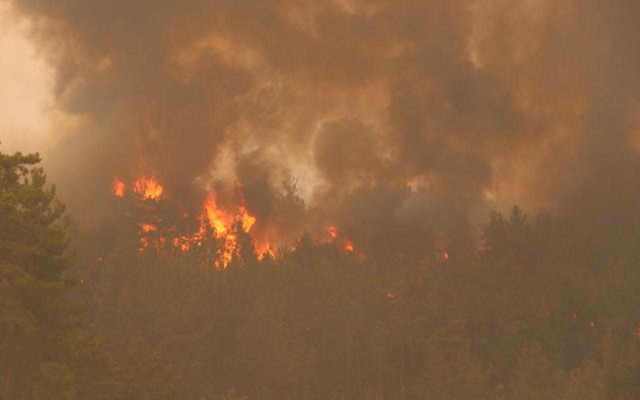 Manavgat Bodrum Milas Marmaris orman yangınlarında son durum ilçe halkı tahliye edildi