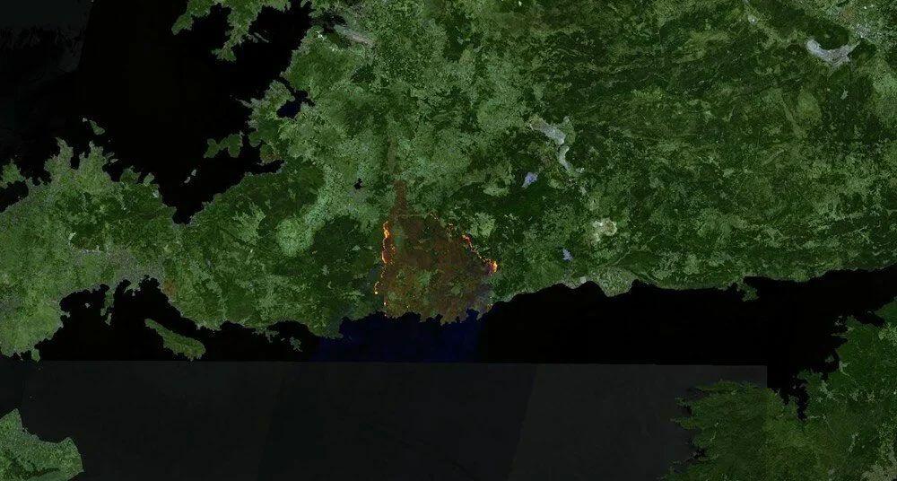Türkiye'deki orman yangınlarının uydu görüntüsü! Öncesi ve sonrasına bakın