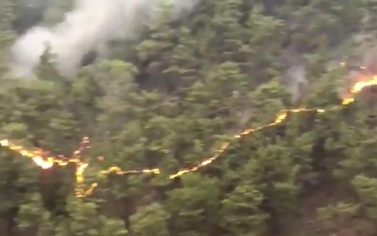 Çizgi şeklindeki yangın videosu! Ormanlar uzaydan mı yakıldı işte işin aslı