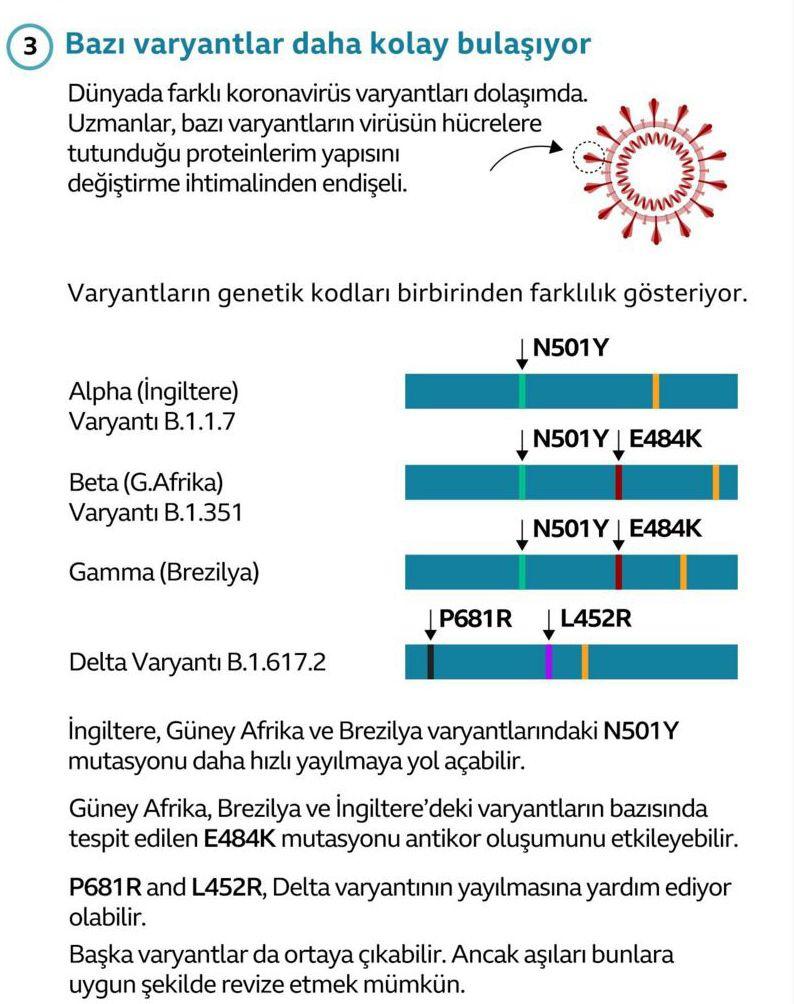 Korkulan oldu Mu varyantı Türkiye'de! Aşılar koruyor mu Mu varyantının belirtileri neler?